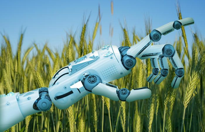 ai agriculture primary 100714659 large 700x450 - AI, machine learning blossom in agriculture and pest control