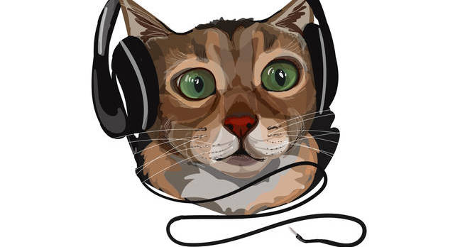 shutterstock cat headphones.jpgx648y348crop1 - Palmtop nostalgia is tinny music to my elephantine ears
