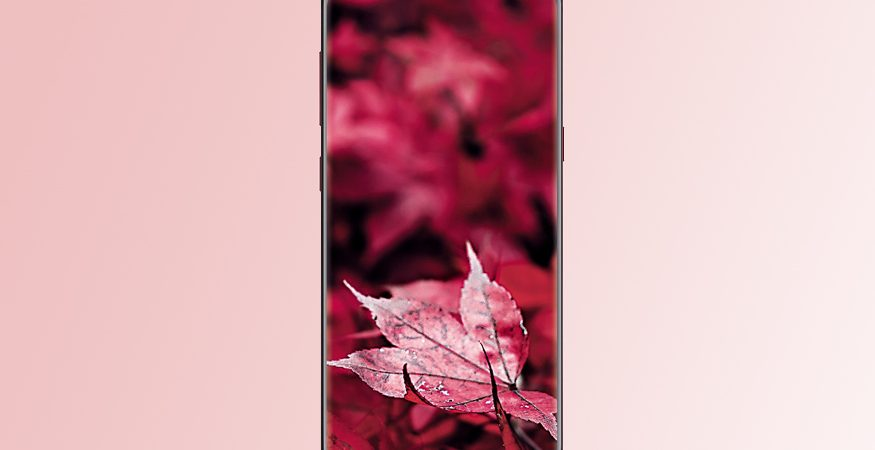 Samsung Galaxy S8 Burgundy Red Edition 875x450 - Samsung Galaxy S8 'Burgundy Red' Variant Launched in India as a Limited Edition